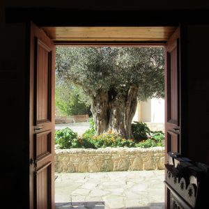 hol-esca-new-olive-tree-church-entrance-shot-oct-16